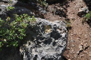 Метка для выхода на гору на тропе Кириш-Кемер